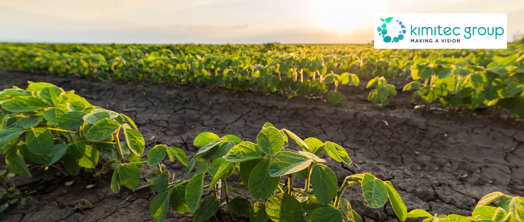 Soluções 100% naturais e eficazes para a nutrição <br /> e a estimulação das suas culturas