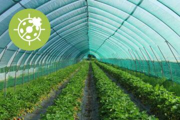 Soluções Bio e Resíduo Zero