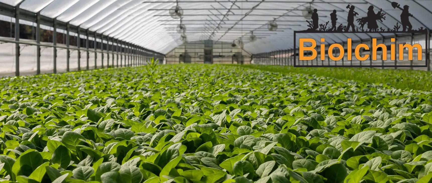 Descubra como esses agricultores, usando os <br /> nossos produtos, tornaram a sua colheita num sucesso.